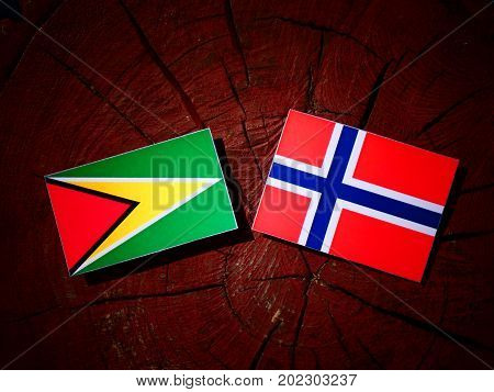 Guyana Flag With Norwegian Flag On A Tree Stump Isolated