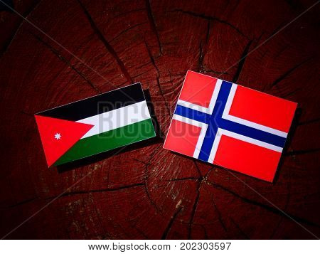 Jordanian Flag With Norwegian Flag On A Tree Stump Isolated