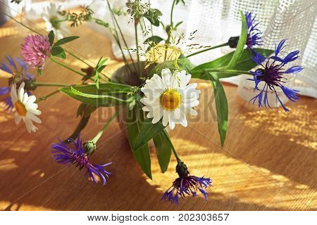 The bouquet of summer wildflowers in sunlight