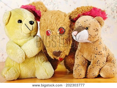 The friendship warms. The old stuffed toys