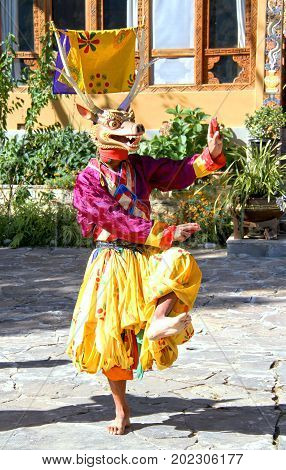 PARO BHUTAN - November10 2012 : Bhutanese dancers with colorful animal mask performs traditional dance at hotel in Paro Bhutan