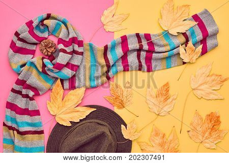 Fall Fashion Glamour Lady Look.Trendy Scarf. Fashion Stylish Glamour Hat. Fall Leaves. Autumn Minimal. Vanilla Pastel colors.