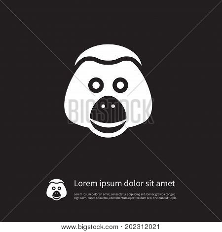 Ape Vector Element Can Be Used For Monkey, Ape, Baboon Design Concept.  Isolated Monkey Icon.