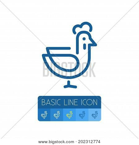 Poultry Vector Element Can Be Used For Rooster, Hen, Poultry Design Concept.  Isolated Hen Outline.