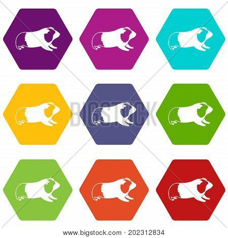 Hamster icon set many color hexahedron isolated on white vector illustration