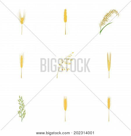 Cereal grain icons set. Cartoon set of 9 cereal grain vector icons for web isolated on white background