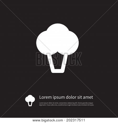 Cabbage Vector Element Can Be Used For Asparagus, Broccoli, Cabbage Design Concept.  Isolated Cauliflower Icon.
