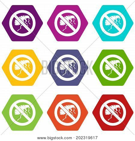 Etching insect icon set many color hexahedron isolated on white vector illustration