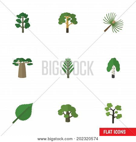 Flat Icon Bio Set Of Jungle, Tree, Linden And Other Vector Objects