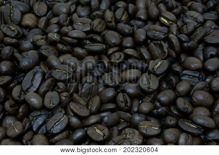 pile of coffee bean. dark roasted coffee bean