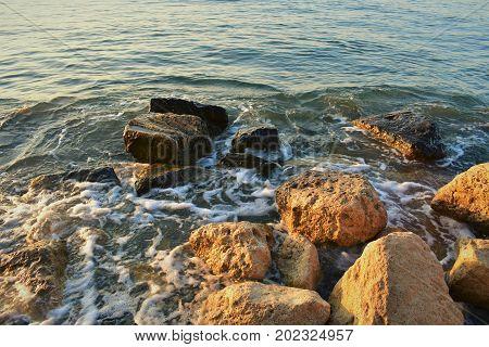 Sea rocks  in the light of dawn and sea foam.