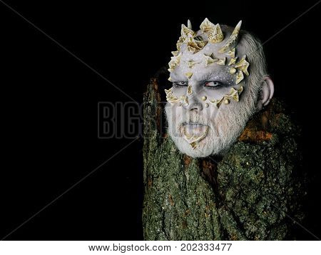 Goblin with horns on head. Druid behind old bark isolated on black. Tree spirit and fantasy concept. Man with dragon skin and bearded face. Monster with sharp thorns and warts copy space