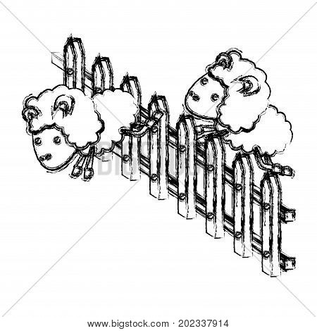 sheep animal couple jumping a wooden fence blurred silhouette on white background vector illustration