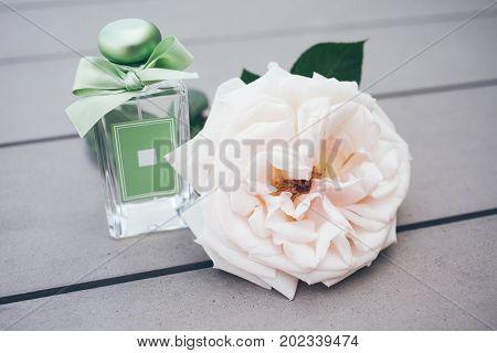 Perfume bottle and rose. Retro style. Custom Made Perfume in a Glass Bottle. Fresh green garden aroma