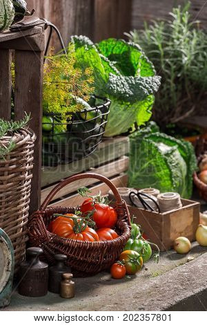 Old Pantry With Harvested Vegetables And Fruits