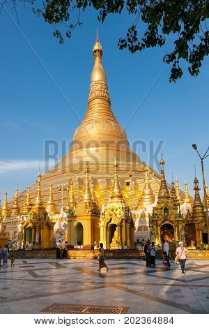 Yangon Myanmar - 2017 January 7 : The golden stupa of the buddhist Shwedagon Paya one of the most important buddhist monuments in the world in the city of Yangon in Burma