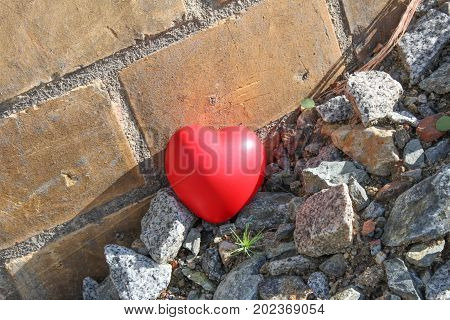 Red heart on disposal brash/ This is red heart on disposal brash.