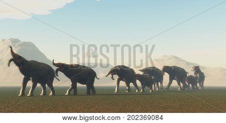 Deinotherium Herd 3d illustration - A herd of Deinothrium mammals head to a watering hole in the Pleistocene Period of Africa.