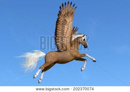 Palomino Pegasus 3d illustration - A palomino Pegasus flies on powerful wings on a clear spring day to his next destination.