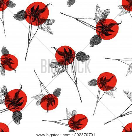 Vector seamless pattern with red Clematis flower isolated on white background. Graphic drawing pointillism technique. Botanical natural collection. Floral illustration drawn by hand
