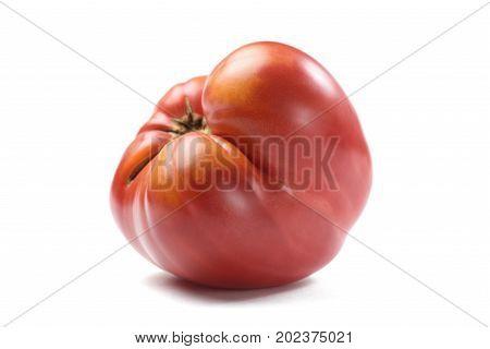 Imperfect organic big fresh red tomato isolated closeup
