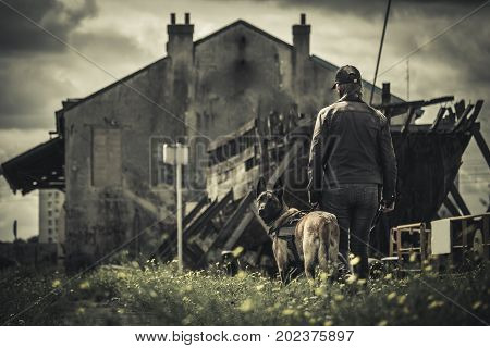 A woman walks with her dog in apocalyptic boat landscape and abandoned building