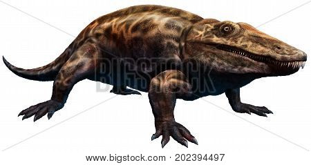 Eryops from the carboniferous era 3D illustration