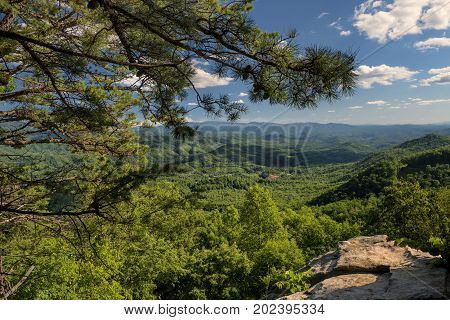 A summer vista view from the Look Rock area of Foothills Parkway West in Great Smoky Mountains National Park Tenneseee USA
