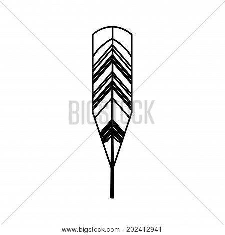 uncolored  feather  over white  background vector  illustration