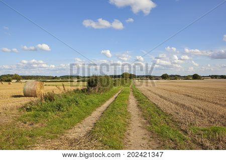 Farm Track At Harvest Time