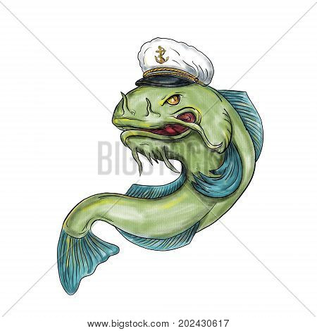 Tattoo style illustration of a Captain Catfish wearing hat cap on isolated white background.