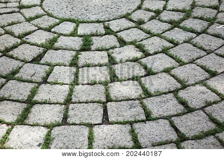 Paving blocks made of round stones and concrete path.