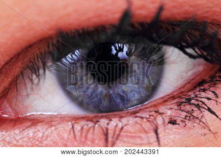 Blue Women Eye