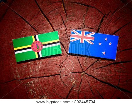 Dominica Flag With New Zealand Flag On A Tree Stump Isolated