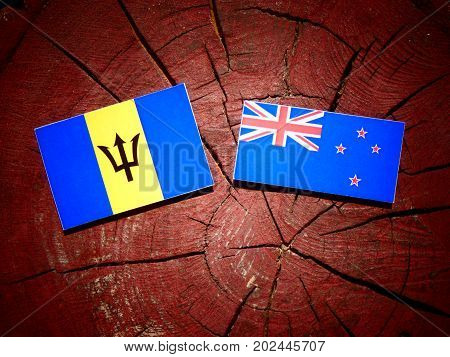 Barbados Flag With New Zealand Flag On A Tree Stump Isolated