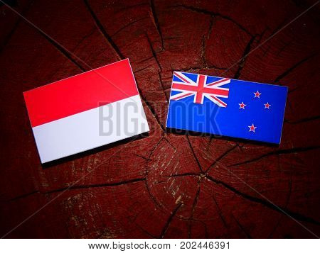 Indonesian Flag With New Zealand Flag On A Tree Stump Isolated