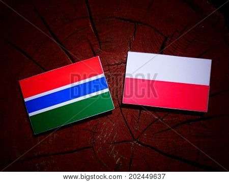 Gambia Flag With Polish Flag On A Tree Stump Isolated