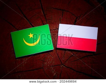 Mauritania Flag With Polish Flag On A Tree Stump Isolated