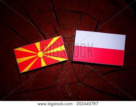 Macedonian Flag With Polish Flag On A Tree Stump Isolated