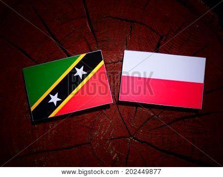 Saint Kitts And Nevis Flag With Polish Flag On A Tree Stump Isolated