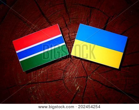 Gambia Flag With Ukrainian Flag On A Tree Stump Isolated
