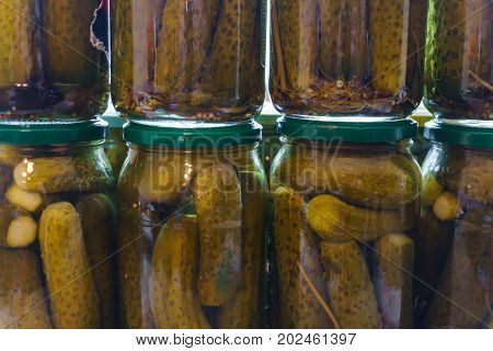 Preparing for the winter. Marinating small cucumbers in a jar.