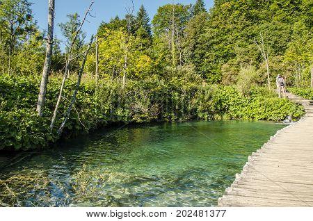 landscape of plitvice lake national park unesco heritage site croatia.