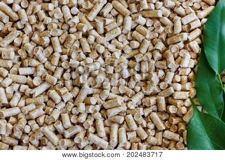 Biofuels. Alternative biofuel from sawdust wood pellets for boilers и green leaves for background .