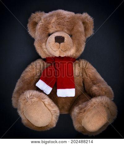 A curious, peering Teddy bear on a dark background