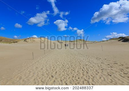 Gray Dunes's trail of Curonian Spit National Park in summer with some distant walkers, Curonian Spit, Lithuania, Europe