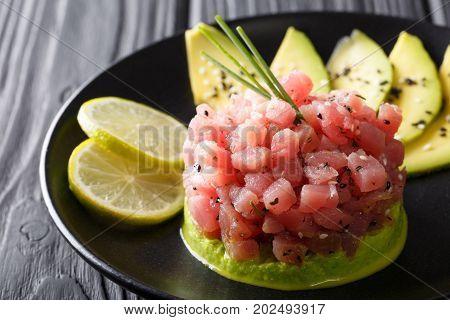 Tartare From Tuna Served With Avocado, Wasabi And Lime Macro. Horizontal