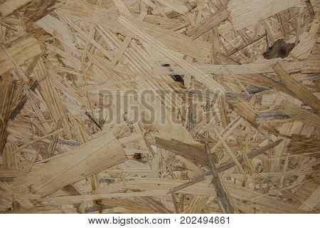 fragment of the OSB board (Oriented strand board) with visible shavings as the background