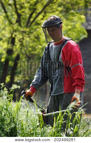 worker man with power tool string lawn trimmer mower cutting grass in garden