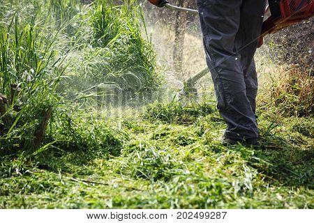 mowing trimmer - men worker cutting grass in green yard